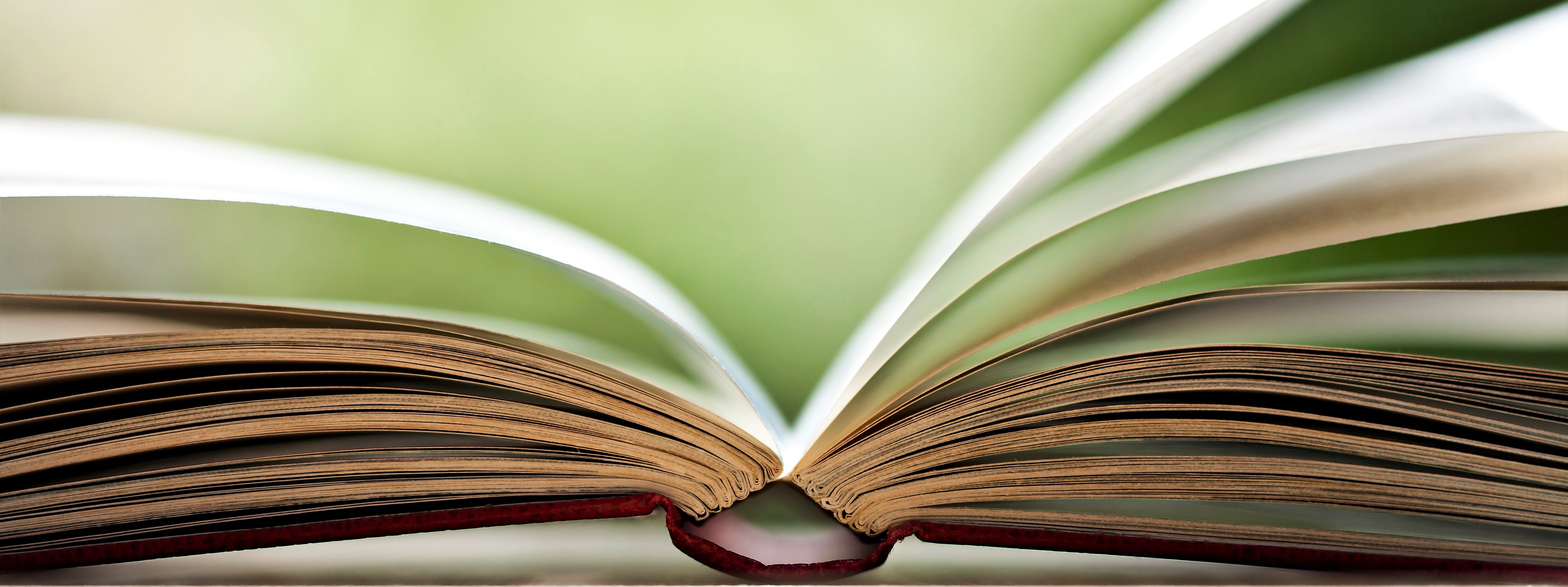 Close up on open book
